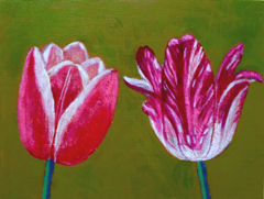 Andrea Letterie, Together tulips 1, Gemengde techniek op hout, 15x20 cm, €.225,-